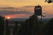 Weinberge im Hintergrund Windräder im Sonnenuntergang