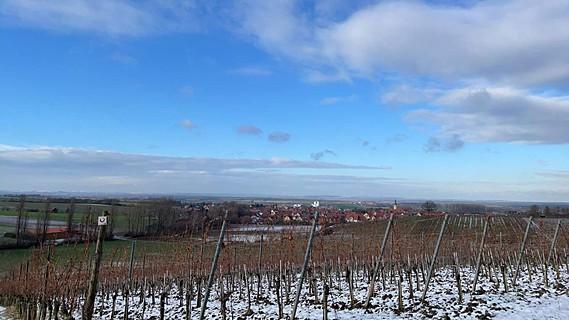 Schnee in den Wiesenbronner Weinbergen