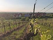 Dorf mit Weinbergen